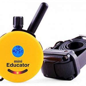 ET-300TS-Mini-Educator-E-Collar