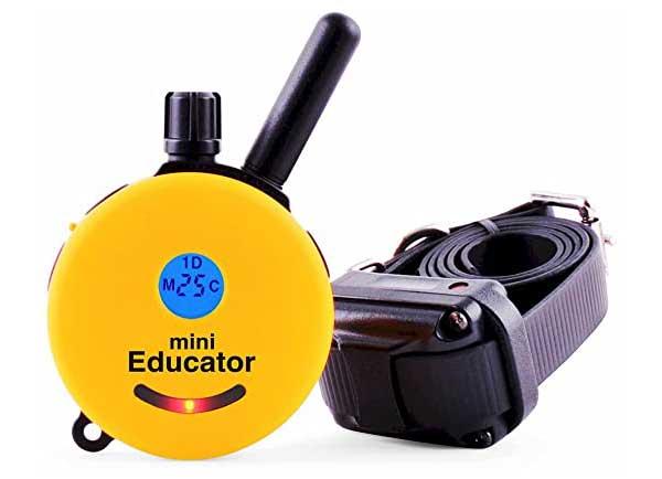 ET-300TS-Mini-Educator-E-Collar