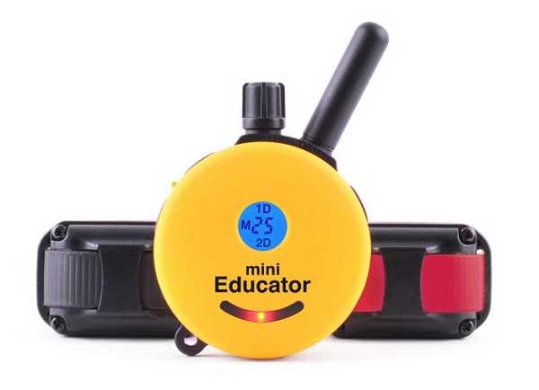 ET-302TS-2-Dog-Mini-Educator